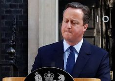 The Brexit Blog: David Cameron's resignation leads to Tory power sc...