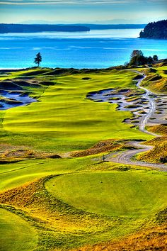Chambers Bay Golf Course overlooking the Puget Sound near Tacoma, Washington and home of the 2015 US Open [ArtOfGolf.com] #course #art #golf