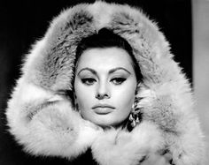 "ssptr: ""  Sophia Loren in Rome, 1964 """