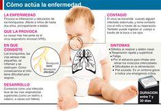 Vacunas que deben recibir los niños antes del 1º año: Vacuna: Antiinfluenza, inmuniza contra la Influenza estacional. Requiere dos dosis. Durante los 6 y 23 meses