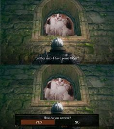 Praise the Löps \[T]/ Humor, Dark Souls, Twisted Humor, Humour, Relatable, Haha, Crazy Cats, Laugh, Picture