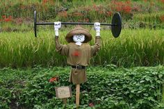 Scarecrows for Garden Ideas How To Make A Scarecrow For Your Garden Scarecrows for Garden Ideas. Scarecrows were first invented as a way to keep birds, especially crows, out of gardens and fields. Make A Scarecrow, Scarecrow Ideas, Motion Activated Sprinkler, Scarecrows For Garden, Fall Projects, Garden Art, Garden Ideas, Tree Decorations, Planters