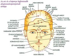 Akup. pontok Acupressure, Acupuncture, Map, Cards, Maps
