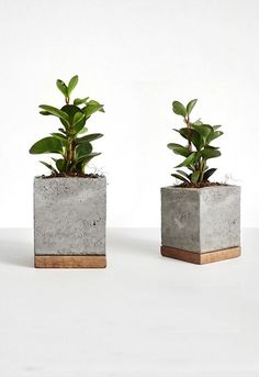 Cement planter with wood base square concrete pot geometrically modern handmade planters Concrete Pots, Concrete Furniture, Concrete Crafts, Concrete Projects, Wood Planters, Wooden Crafts, Modern Planters, Succulent Planters, Succulents Garden