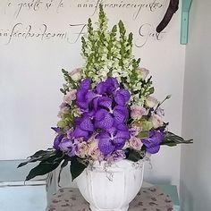 "9 aprecieri, 1 comentarii - Florarie cu gust (@florarie_cu_gust) pe Instagram: ""#flowerarrangement #florariecugust #vandaorchid #anniversary #lovemywork #myday #flowers…"""