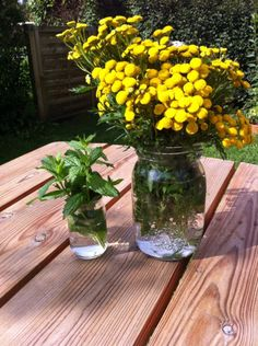 Plantefarvning for begyndere – Agnes og Musen Go Green, Shibori, Knitting Yarn, Glass Vase, Planters, Prints, Diy, Painting, Inspiration