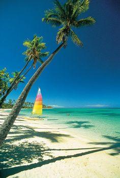 Plantation Island ~ Fiji