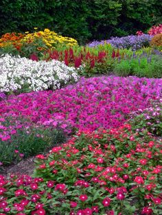 Missouri botanical gardens | Dose of Inspiration: Simply beautiful