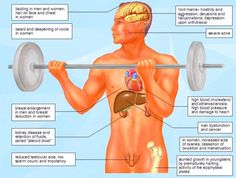 What is bad about steroids works like steroids