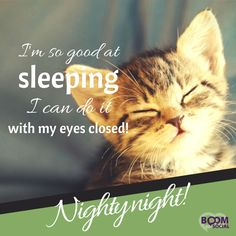 Goodnight my friend sweet dreams and God bless! Good Night Cat, Good Night Funny, Good Night Prayer, Good Night I Love You, Good Night Blessings, Good Night Sweet Dreams, Good Night Moon, Good Night Image, Night Gif