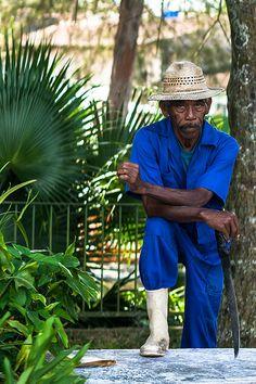 Jardinero Cubano