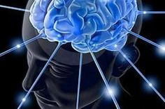 Facts:  1. 80% of the brain is water.This means that it is important that you remain properly hydrated for the sake of your mind.  2. Information travels along neurons at different speeds. This  is why sometimes you can recall information instantly, and sometimes it takes a little longer.  3. Our brain makes up only 2% of our body weight yet it requires 20% of oxygen that enters our bloodstream.  4. The brain operates on same amount of power as 10-watt light bulb.