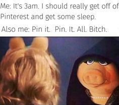 PIN. IT. ALL. BITCH I Laughed, Lol, Humor, Funny, Tired Funny, Cheer, Humour, Wtf Funny, Hilarious