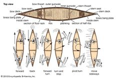 Simple chart showing how to row a canoe