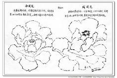 王应敬教授洛阳牡丹作品 - 蚁多米 - 蚁多米版画