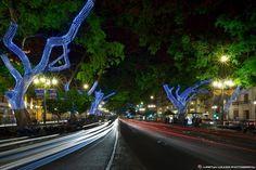 Mira qué preciosidad, la Alameda Principal de #Málaga ¿Te gusta?