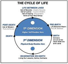 Past Life & Between Life Regression Therapy Spiritual Enlightenment, Spiritual Wisdom, Spiritual Growth, Spiritual Awakening, Regression Therapy, Past Life Regression Hypnosis, Cycle Of Life, Spirit Science, Meditation