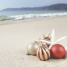 Christmas + Beach : remember when we move back to the islands...