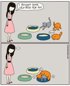 14 Hilarious Comics That Perfectly Capture Life With Cats