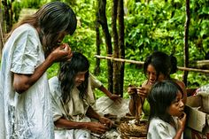 A Portrait of the Lacandon People in Mexico – Voices