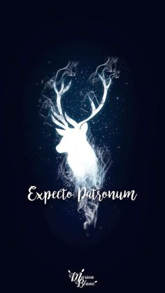 15 Harry Potter inspired wallpapers to fill . - Mobile wallpaper with the illuminated silhouette of in deer, expecto patronum, Harry Potter Harry Potter Tumblr, Harry Potter World, Harry Potter Magie, Arte Do Harry Potter, Dobby Harry Potter, Harry Potter Spells, Harry Potter Pictures, Harry Potter Love, Harry Potter Universal