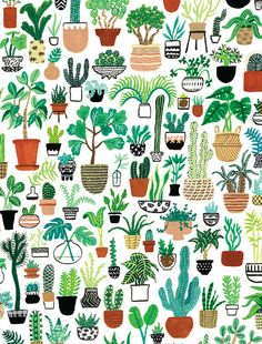 Plant Party Print Bring some major plant action into your life! This Plant Party print depicts a ton Kaktus Illustration, Art And Illustration, Plant Wallpaper, Flower Wallpaper, Drawing Wallpaper, Plant Background, Cactus Art, Cactus Plants, Flower Backgrounds
