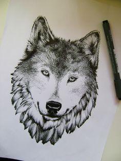 Wolf 20.01.2013