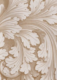 Acanthus leaves; used in the Corinthian (and Composite) Order.