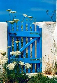 Blue wooden gate and wild flowers! I picture the beach and ocean to be on the otherside of this gate. The sky and gate are the same color Love it - Gardening For You Love Blue, Blue And White, Color Blue, White Cow, Vibeke Design, Fence Gate, Picket Gate, Fencing, Garden Gates