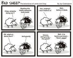 Some regular sheep puns...