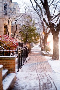 I would love living there and strolling down those sidewalks!