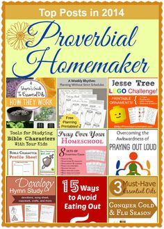 Top 2014 Posts at Proverbial Homemaker
