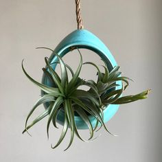 Boho Nursery Gift, Air Plant Container, Modern Wall Decor, Hanging Planter Pot, Baby Room Decor, Unique Wall Decor, Aqua Turquoise, Airplant by ArtByJenF on Etsy https://www.etsy.com/listing/271730074/boho-nursery-gift-air-plant-container
