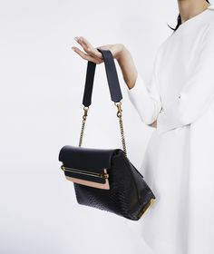 clohe bag - Chloe HandBag for Barneys was shot by Billy Kidd. | ACCESSORIES ...