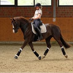 I'm so excited to try dressage. I've recently started to become interested in learning dressage and it looks super fun