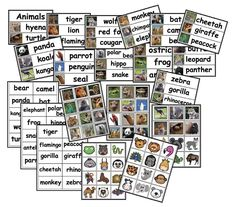 Come Do Some Zoo Craftivities With Me I've taught PK, K, & college; going on a variety of field tr. Animal Activities, Travel Activities, Name Tag For School, Vocabulary Building, Vocabulary Cards, Word Pictures, Picture Cards, Animal Cards, Zoo Animals