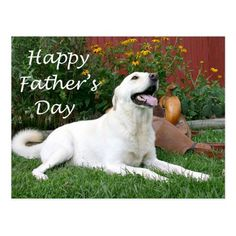 Shop Labrador Retriever Father's Day postcard created by Personalize it with photos & text or purchase as is! Fathers Day Quotes, Fathers Day Crafts, Happy Fathers Day, Black Labrador Retriever, Retriever Dog, Labrador Retrievers, Dad And Daughter Gifts, Dad Daughter, Father's Day Greeting Cards