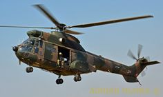 SAAF Puma