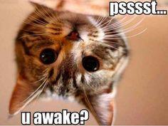 Quando vocês estão com horários de sono diferentes e, na hora de dormir, um precisa ser o estraga-prazeres. | 20 Coisas constrangedoras que acontecem quando você vai morar com alguém