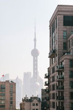 Shanghai / photo by Cereal