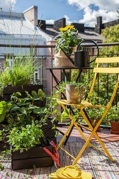 Miejska oaza - letnia aranżacja balkonu | Kolekcja Tikkurila Color Now 2019 - Tikkurila | Farby dekoracyjne | Inspiracje  #tikkurila #tikkurilapotegakolorow #tikkurilainspiruje #tikkurilacolornow2019 #diy #diyideas #diyhomedecor #outsidefurniture #exteriordesign #patiofurniture #patioideas Planter Pots, Diy, Color, Instagram, Home Decor, Decoration Home, Bricolage, Room Decor, Colour