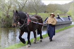 When the first great canals were built in the draft horses were found to be better for moving the engine-less barges than men.and are still used by some to keep tow paths open by right of use till this day. Pontoon Boat, Fishing Pontoon, Sport Boats, Baby Hippo, Canal Boat, Narrowboat, Draft Horses, Horse Drawn, Boat Design