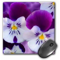 Passionate Pansies Mouse Pad 8 inch x 8 inch x inch and is made of heavy-duty recycled rubber. Matte finish image will not fade or peel. Machine washable using a mild detergent and air dry. Size: 8 in. Printer Ink Cartridges, Pansies, Walmart, Inspired, Violets