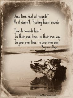 Does time heal all wounds? Time is irrelevant. So how do wounds heal? In their own time, in there own way. In your own time, in your own way. Life Advice, Good Advice, Love Tatto, Inspirational Scripture Quotes, I Miss You Everyday, Time Heals All Wounds, I Wish You Would, Life Without You, Wound Healing