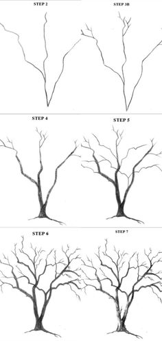 Observe a tree and imagine it without leaves. The structure that is left (trunk, branches and twigs) comprises only lines - some straight, Branch Drawing, Leaf Drawing, Painting & Drawing, Drawing Step, Tree Trunk Drawing, Tree Line Drawing, Drawing Trees, Tree Sketches, Art Drawings Sketches Simple