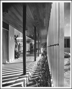 Richard Neutra, Kauffman House, 1946, Photography by Julius Schulman