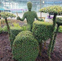 mi futuro jardín ja!.