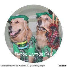 Golden Retriever St. Patrick's Day Bagpipers 9 Inch Paper Plate