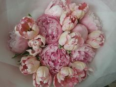 Classic Peonies and Peony Tulips for Mothers Day. A fav of mine!