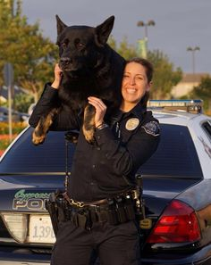 After being injured arresting a felon, Cypress Sem, returns to work with his partner, Officer Mathias. Military Working Dogs, Military Dogs, Police Dogs, War Dogs, Animals And Pets, Cute Animals, German Shepherd Puppies, German Shepherds, Service Dogs